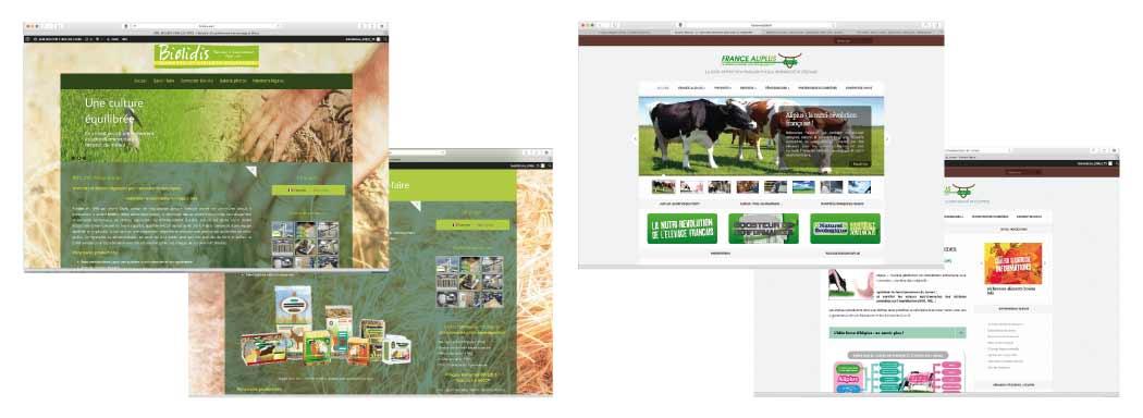 EMS Création sites internet. Dépt 41, 75 : Sites Biolidis.com ; France-Aliplus.fr