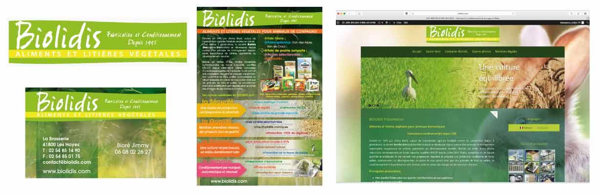 Communication sites internet graphisme : Biolidis création réalisation EMS