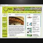 EMS conception sites internet dynamiques multilingues. Loir et Cher 41 et 75. PROMIS