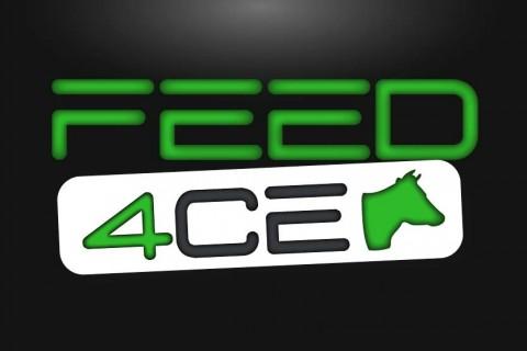 Création nom logotype