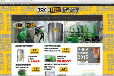 Création sites internet EMS : toy-store, en team avec rêne TOY (I Cintrat e-marketing)