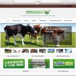 Création site internet EMS : France Aliplus. Conseil, création, développement, référencement