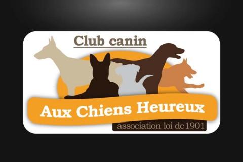 Logo et site internet