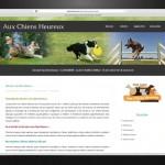 Site internet d'association et logotype par EMS Saint Amand Longpré